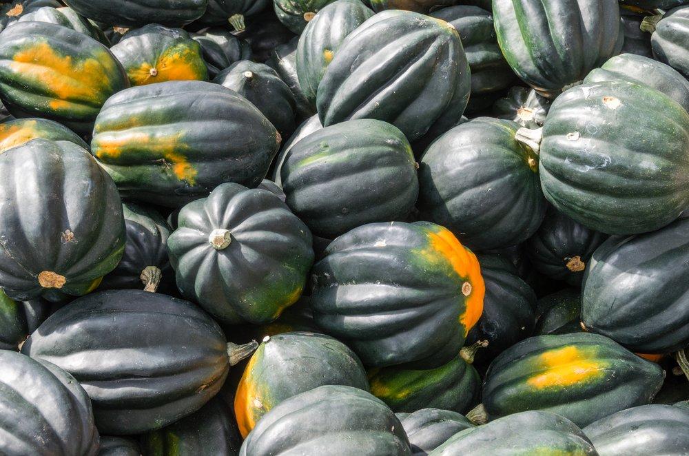 Acorn Squash Fall Vegetable Side Dish
