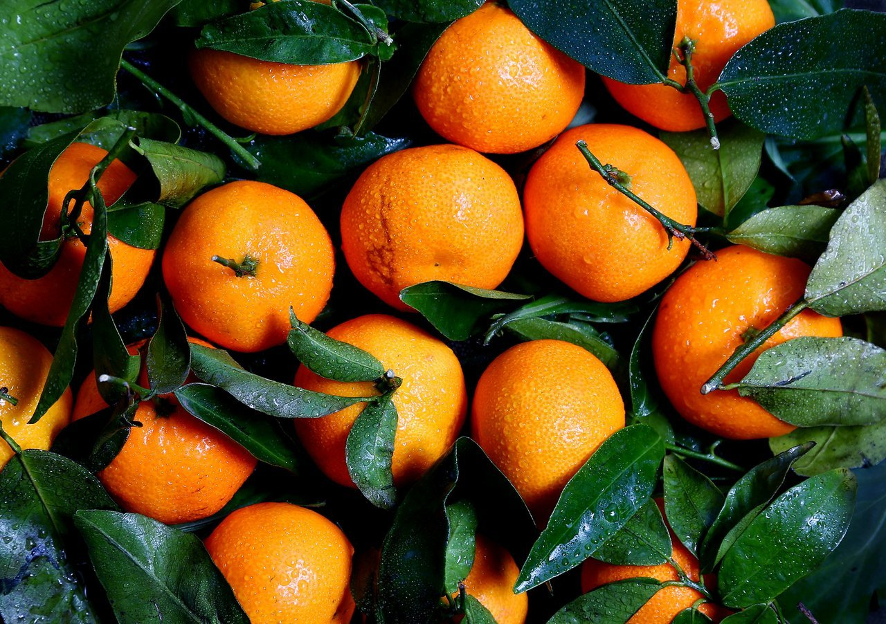 Stay Healthy in Winter Eat Oranges