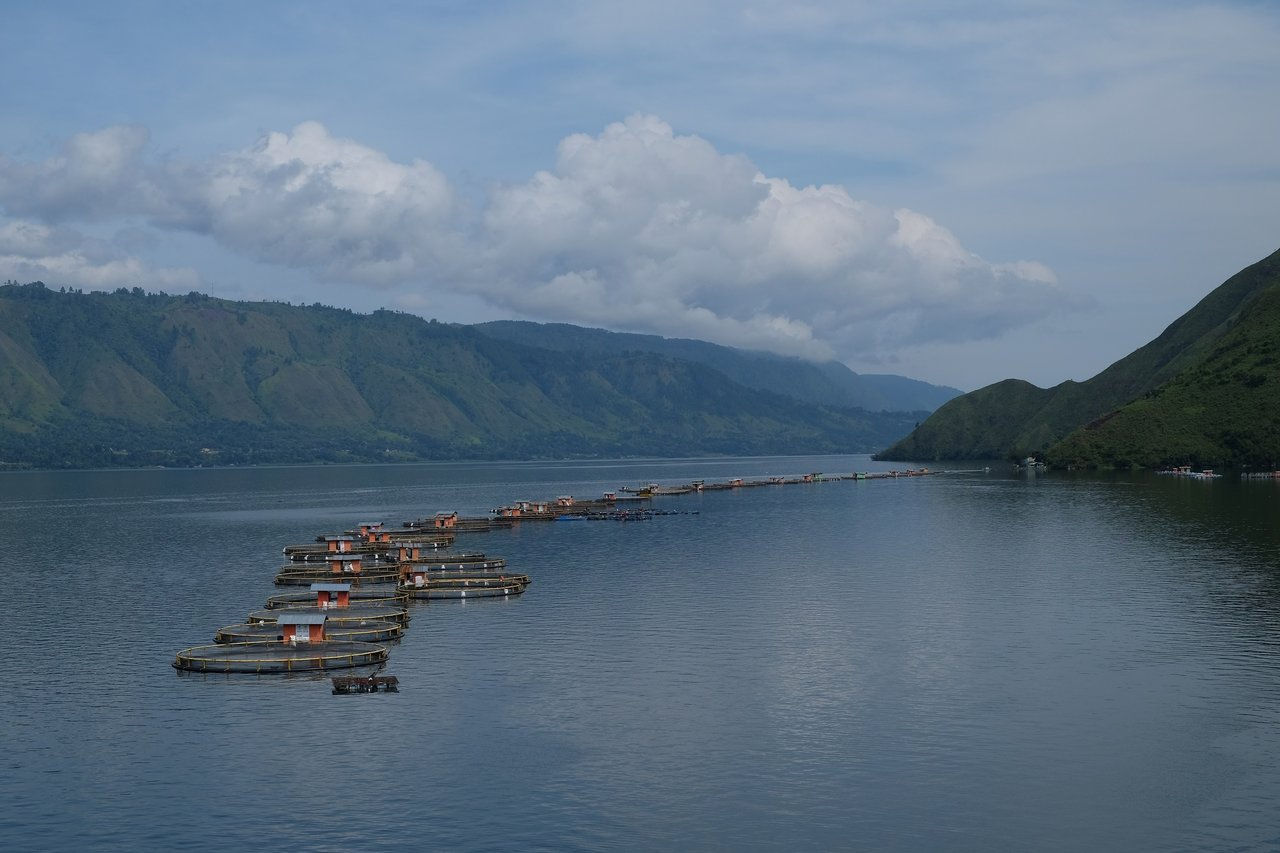 Aquaculture in clean lake water