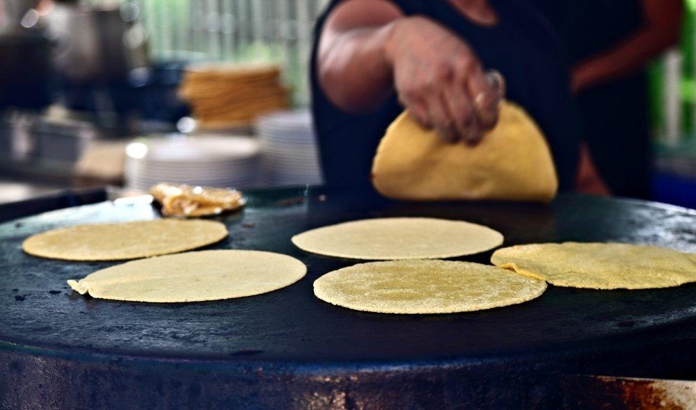 Freshly made corn tortillas