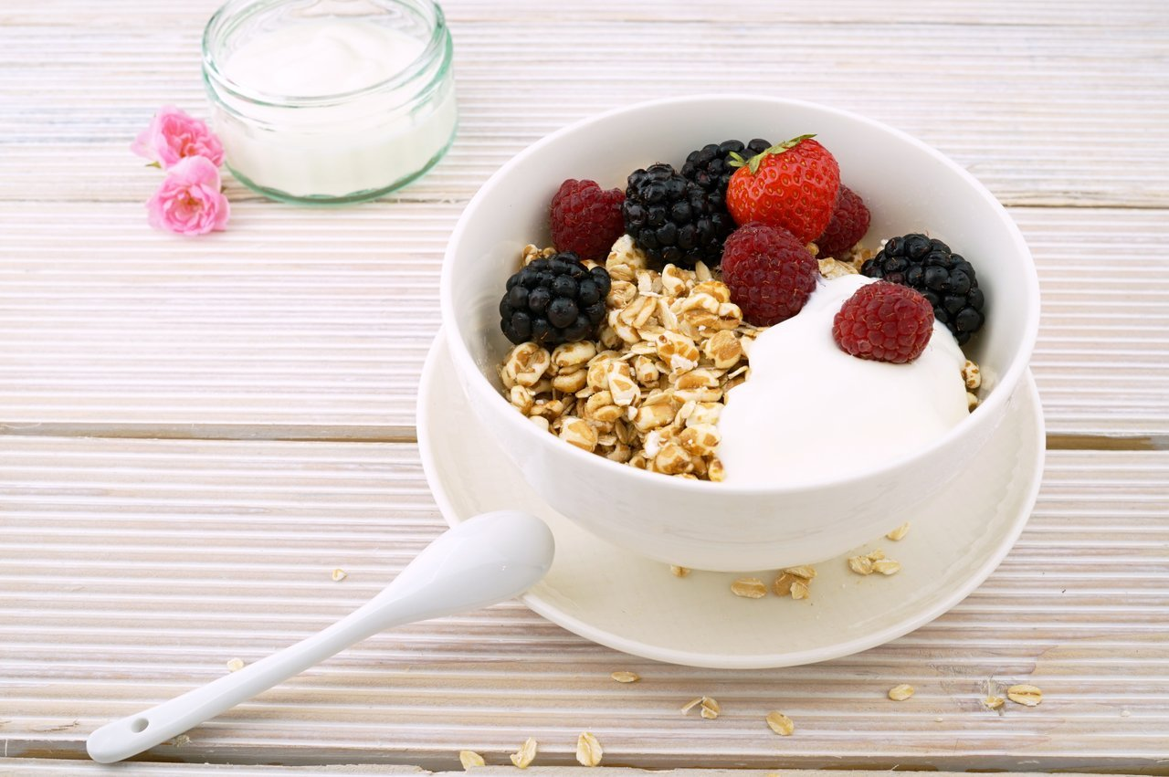 greek yogurt breakfast protein source