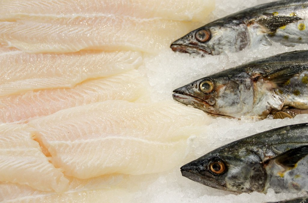 Common myths about frozen fish the healthy fish for Flash freeze fish