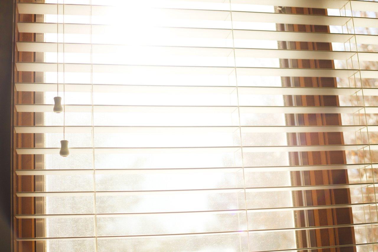 sunlight streaming through window seasonal office productivity