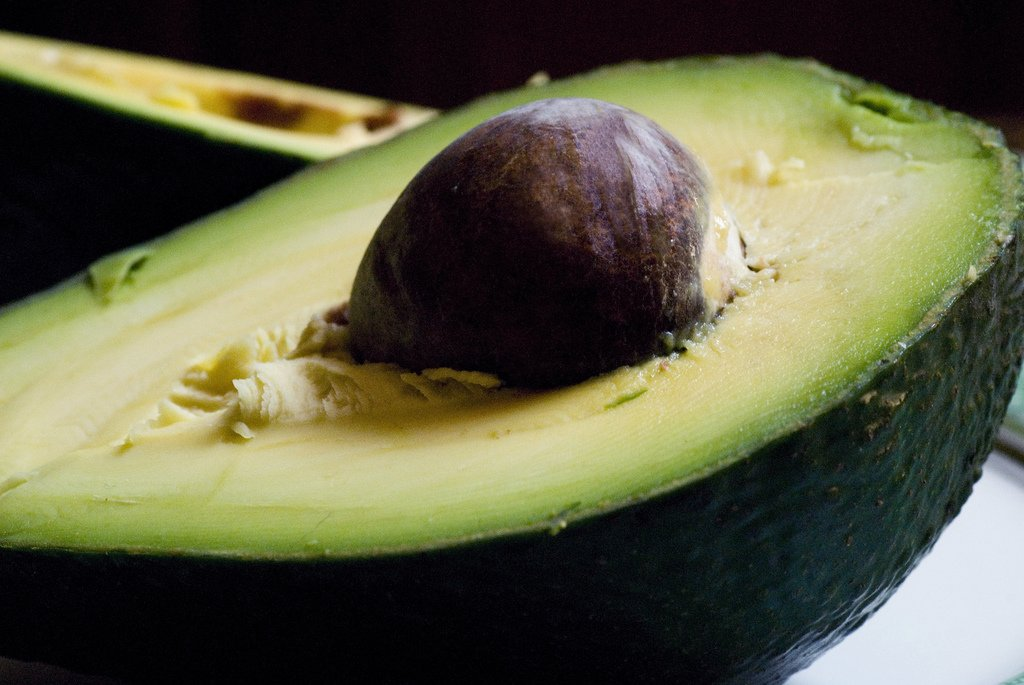 tra i cibi brucia grassi - avocado