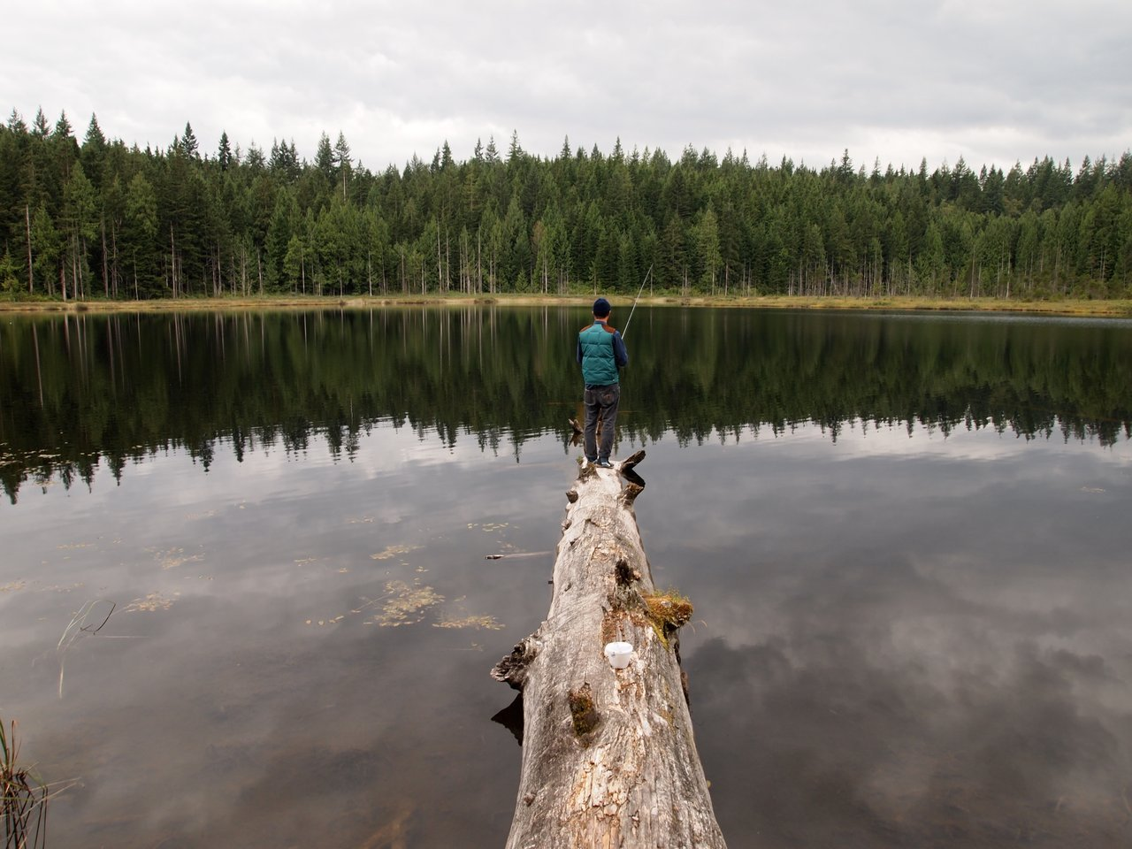 mike lake best fall hikes in vancouver