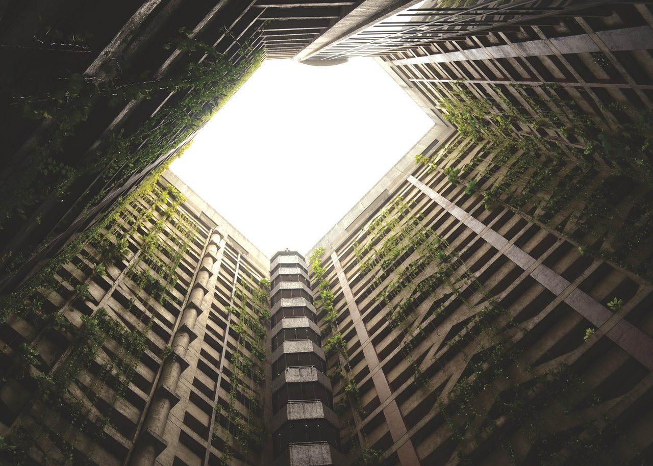 Bottom view of buildings with plants