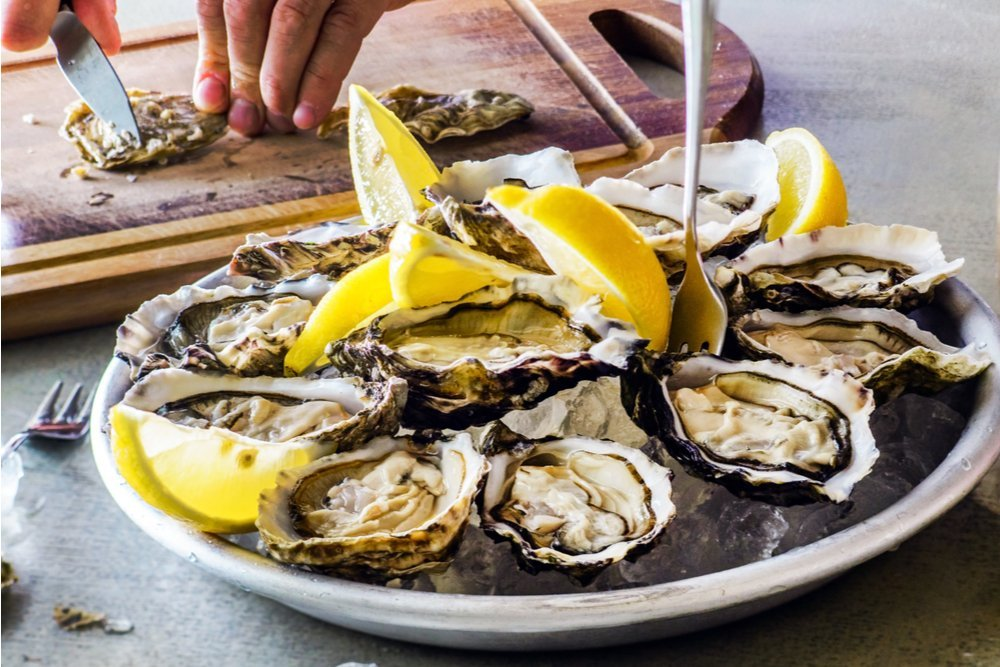 Oysters act as small filters to improve the water in which they live