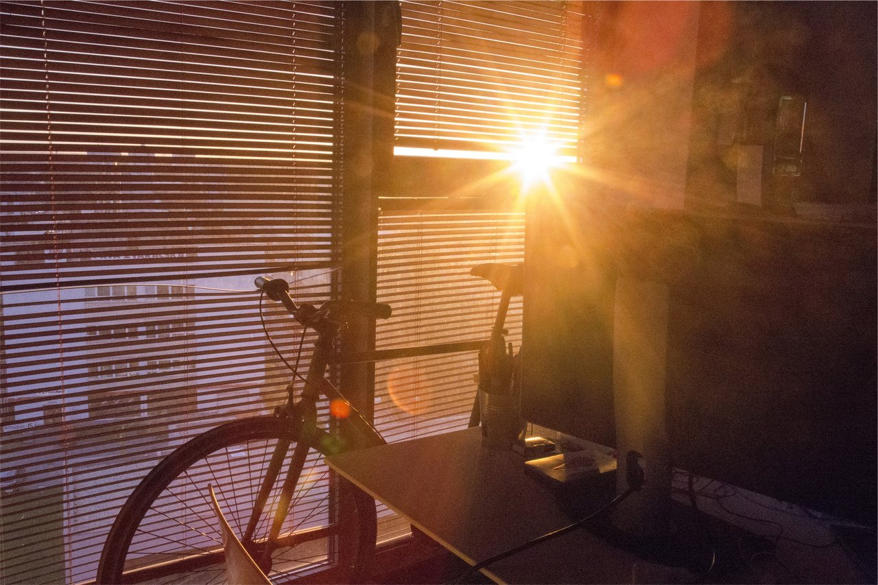summer spring light workplace wellness
