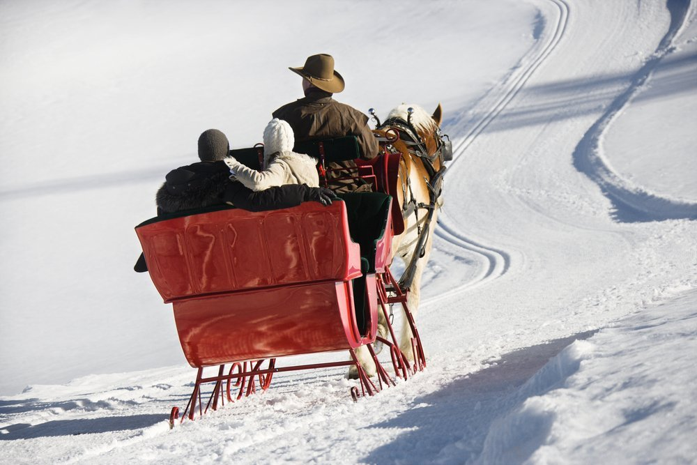 Sit back and enjoy the sleigh ride. Photo: iofoto