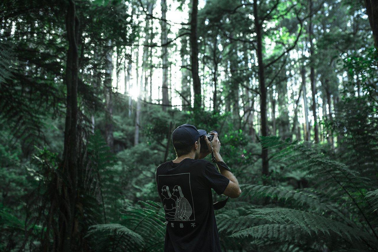 Walk in woods with teen