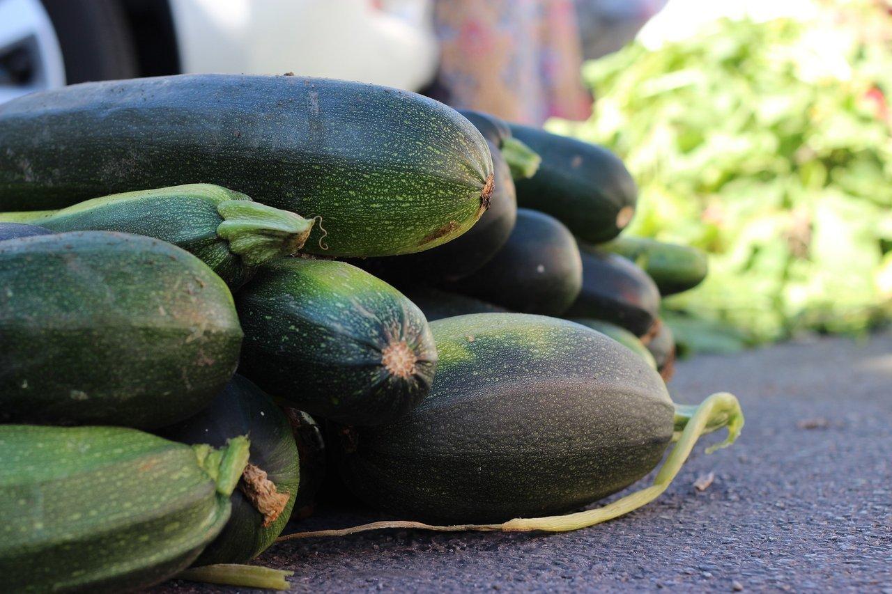 zucchini fresh vegetable side